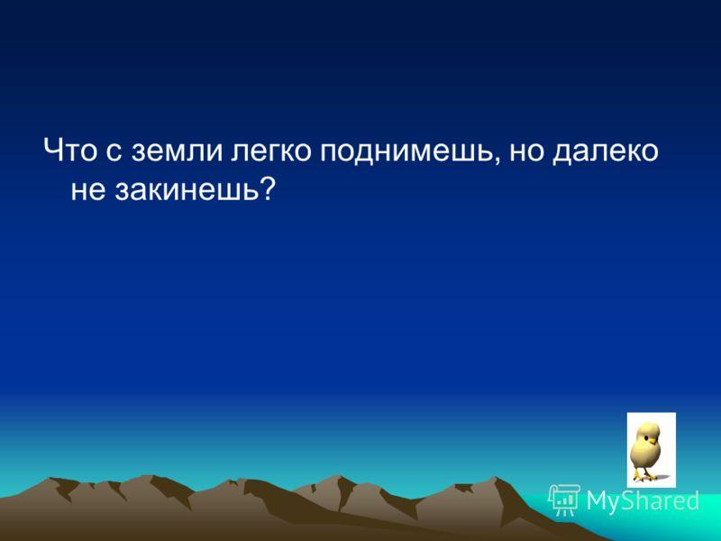 Что с земли легко поднимешь, но далеко не закинешь?