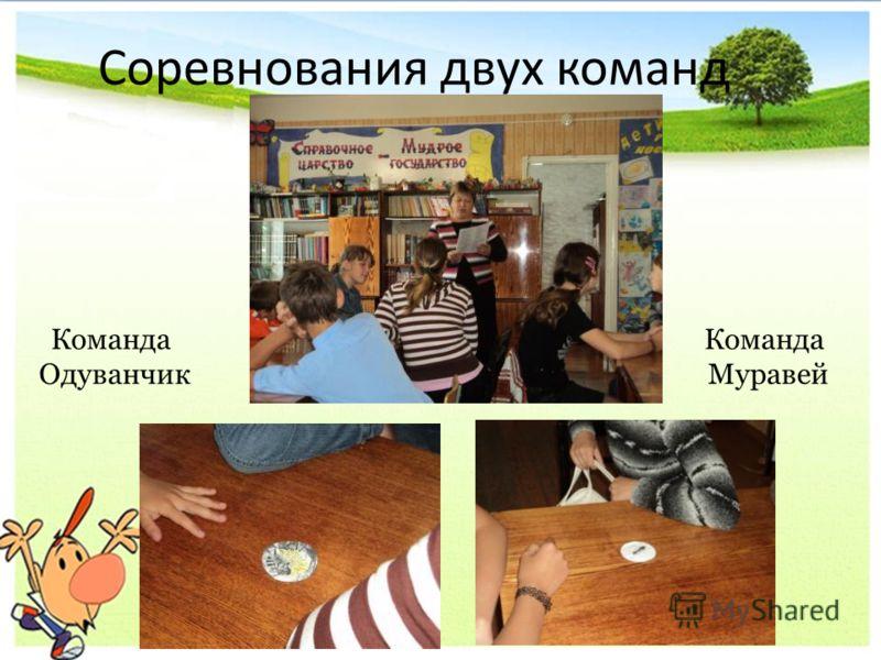 Соревнования двух команд Команда Одуванчик Команда Муравей