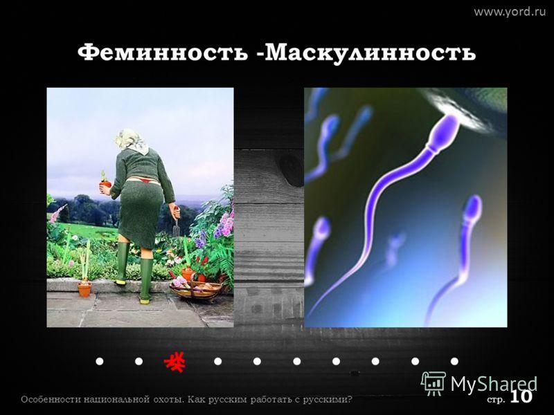 Феминность -Маскулинность www.yord.ru..... Особенности национальной охоты. Как русским работать с русскими? стр. 10