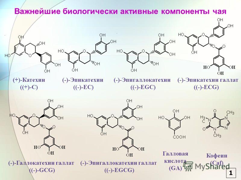 (+)-Катехин ((+)-C) (-)-Эпикатехин ((-)-EC) (-)-Эпигаллокатехин ((-)-EGC) (-)-Эпикатехин галлат ((-)-ECG) (-)-Галлокатехин галлат ((-)-GCG) (-)-Эпигаллокатехин галлат ((-)-EGCG) Галловая кислота (GA) Кофеин (Caf) Важнейшие биологически активные компо