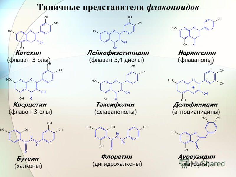 Ауреузидин (ауроны) Флоретин (дигидрохалконы) Бутеин (халконы) Катехин (флаван-3-олы) Лейкофизетинидин (флаван-3,4-диолы) Нарингенин (флаваноны) Кверцетин (флавон-3-олы) Дельфинидин (антоцианидины) Таксифолин (флаванонолы) Типичные представители флав