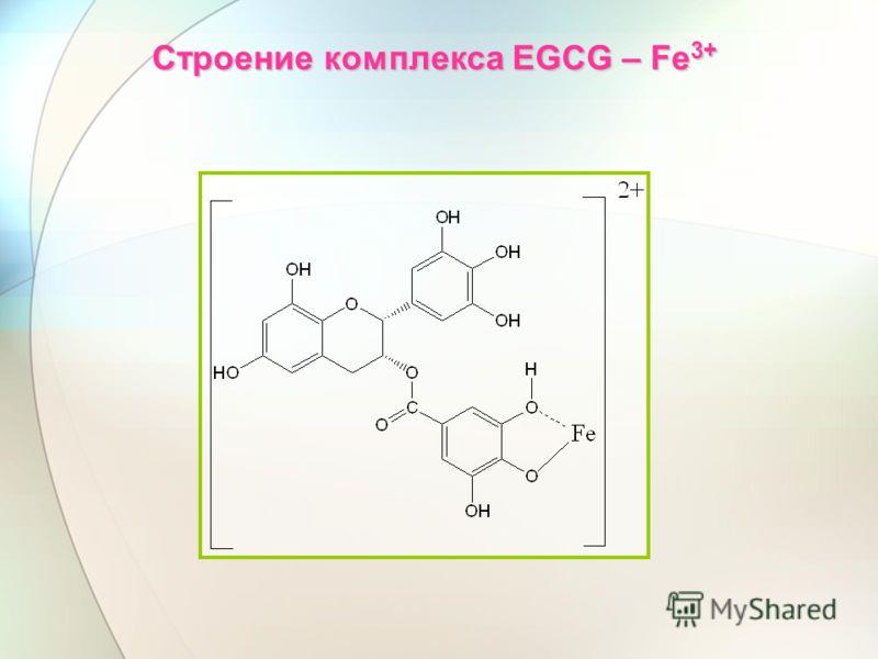 Строение комплекса EGCG – Fe 3+