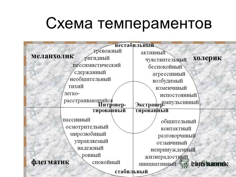 Схема темпераментов активный