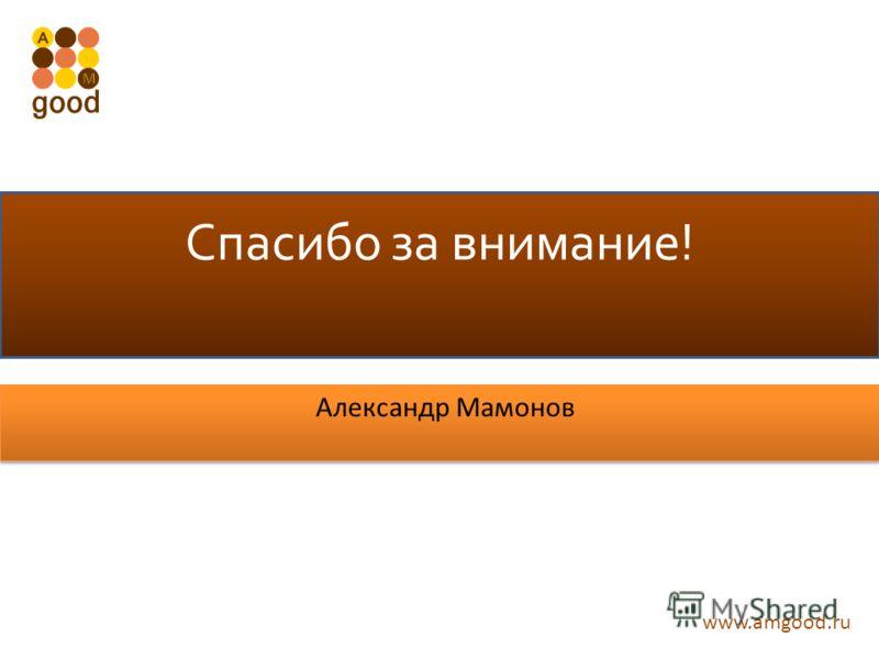 www.amgood.ru Спасибо за внимание! Александр Мамонов