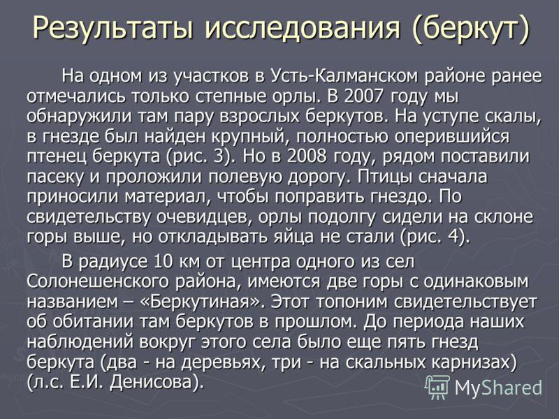 Результаты исследования (беркут) На одном из участков в Усть-Калманском районе ранее отмечались только степные орлы. В 2007 году мы обнаружили там пару взрослых беркутов. На уступе скалы, в гнезде был найден крупный, полностью оперившийся птенец берк