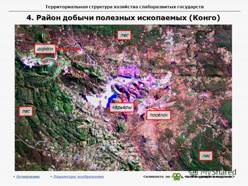 Территориальная структура хозяйства слаборазвитых государств 4. Район добычи полезных ископаемых (Конго) Оглавление Оглавление Параметры изображения дороги лес карьеры посёлок