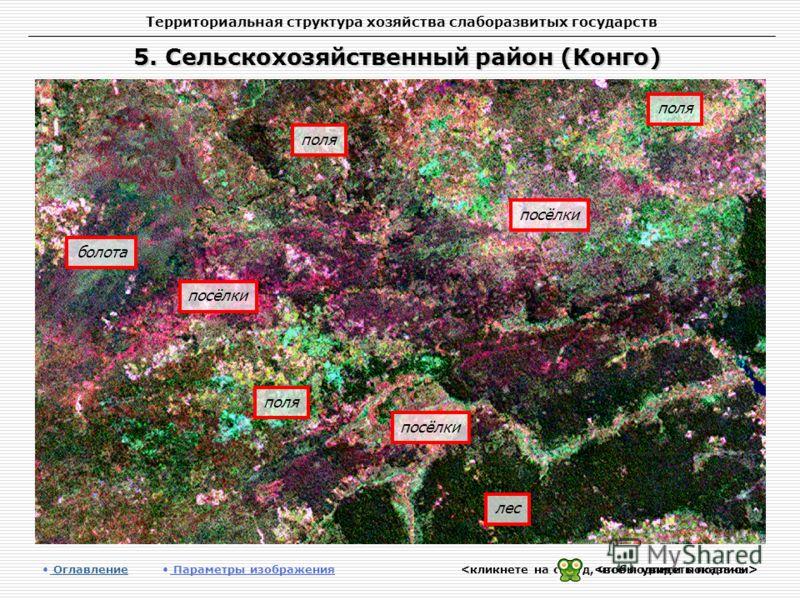 Территориальная структура хозяйства слаборазвитых государств 5. Сельскохозяйственный район (Конго) Оглавление Оглавление Параметры изображения лес поля болота поля посёлки