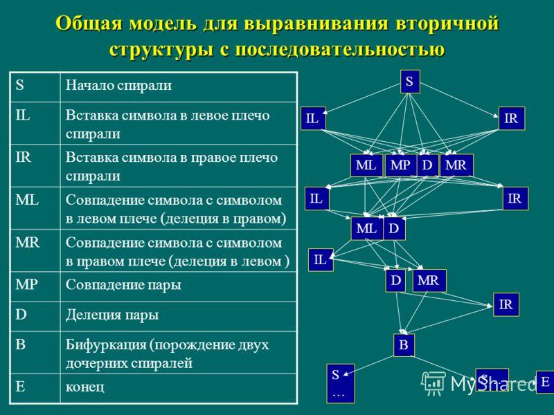 Общая модель для выравнивания вторичной структуры с последовательностью S ILIR MLMRMPD MR B IR MLD IL IR D S S…S… S… E SНачало спирали ILВставка символа в левое плечо спирали IRВставка символа в правое плечо спирали MLСовпадение символа с символом в