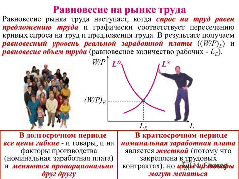 Кривая предложения труда положительный наклон, вдоль Кривая предложения труда (L S ) имеет положительный наклон, отражаю- щий прямую зависимость между реальной заработной платой и желанием людей работать. Чем выше реальная заработная плата (W/P) 2 >(