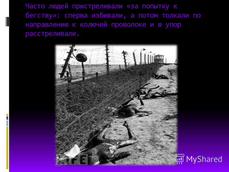 Часто людей пристреливали «за попытку к бегству»: сперва избивали, а потом толкали по направлению к колючей проволоке и в упор расстреливали.
