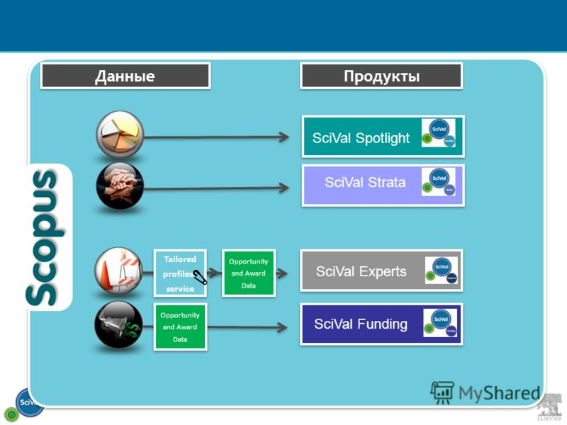 Данные Продукты Tailored profiles/ service Opportunity and Award Data SciVal Spotlight SciVal Strata SciVal Funding SciVal Experts