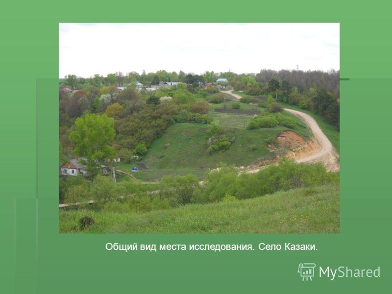 Общий вид места исследования. Село Казаки.