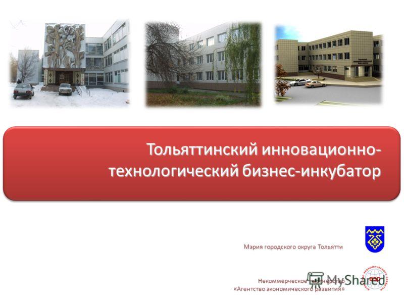 Некоммерческое партнерство «Агентство экономического развития» Тольяттинский инновационно- технологический бизнес-инкубатор Мэрия городского округа Тольятти