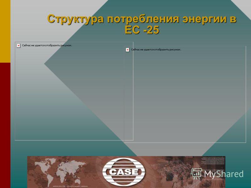 Структура потребления энергии в ЕС -25