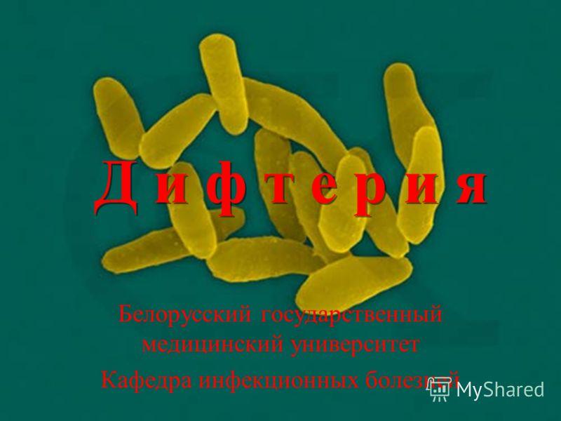 Д и ф т е р и я Белорусский государственный медицинский университет Кафедра инфекционных болезней