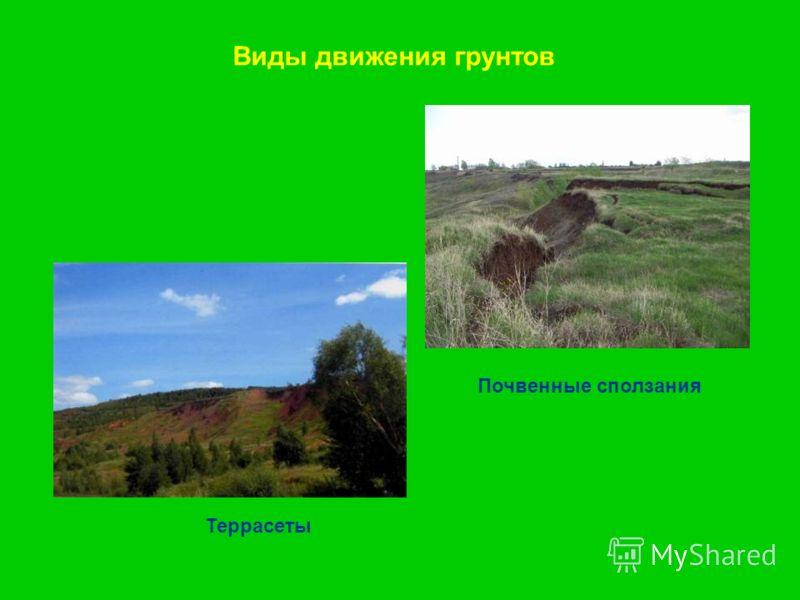 Виды движения грунтов Почвенные сползания Террасеты