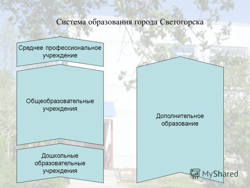 Система образования города Светогорска Дополнительное образование Дошкольные образовательные учреждения Среднее профессиональное учреждение Общеобразовательные учреждения