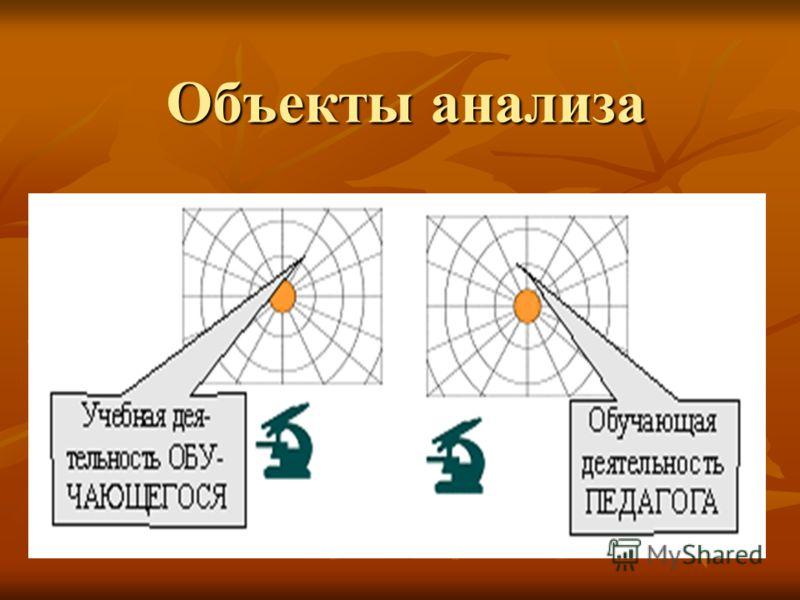 Объекты анализа
