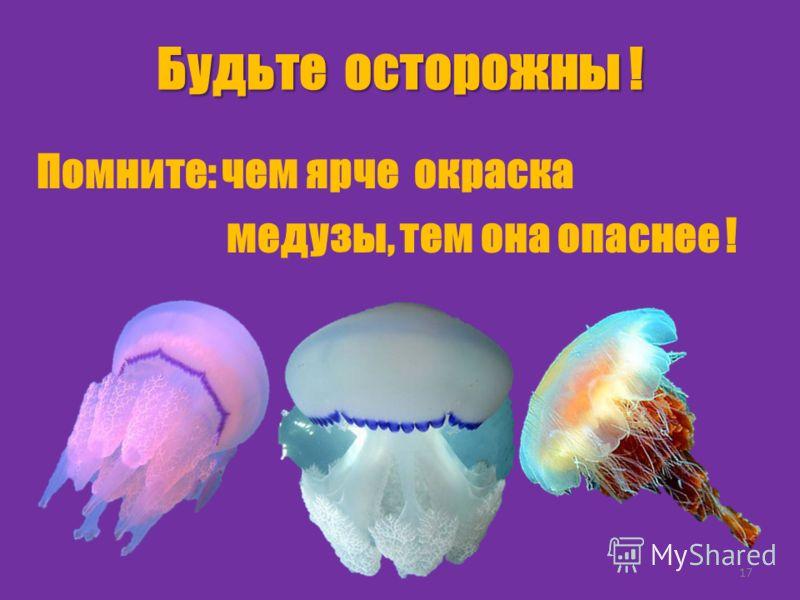 Будьте осторожны ! Помните: чем ярче окраска медузы, тем она опаснее ! 17