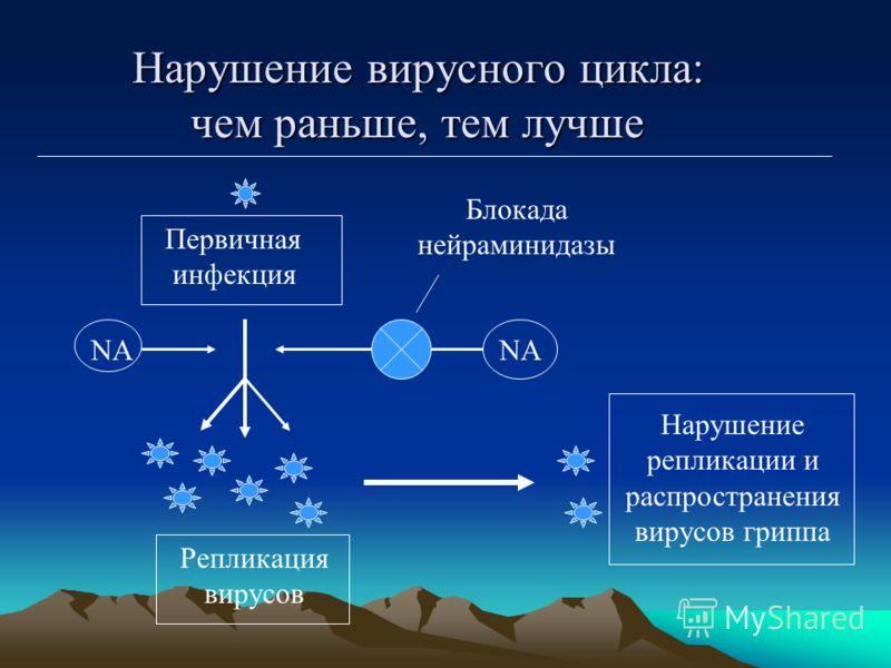 Нарушение вирусного цикла: чем раньше, тем лучше Первичная инфекция Репликация вирусов Блокада нейраминидазы NА Нарушение репликации и распространения вирусов гриппа NА