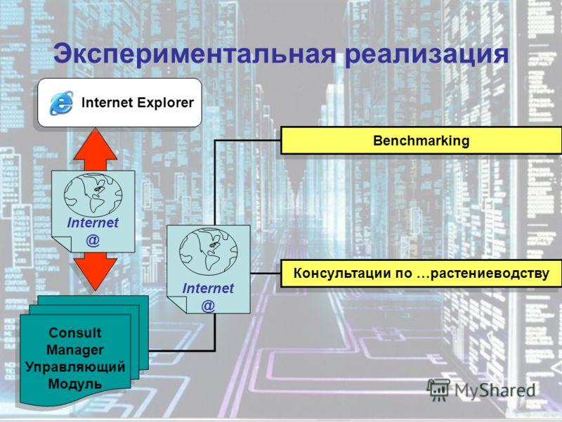 Экспериментальная реализация Consult Manager Управляющий Модуль Internet @ Benchmarking Консультации по …растениеводству Internet @ Internet Explorer