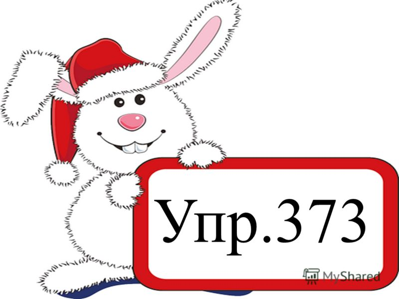 Упр.373