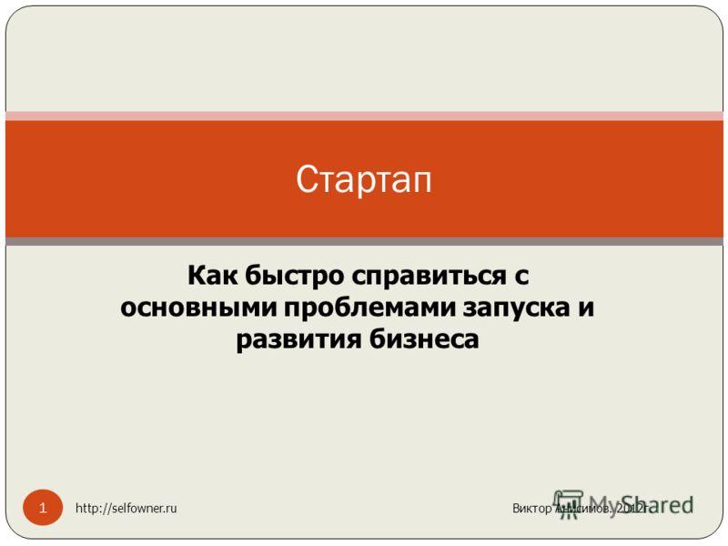 Как быстро справиться с основными проблемами запуска и развития бизнеса Стартап 1 http://selfowner.ru Виктор Анисимов. 2012г.