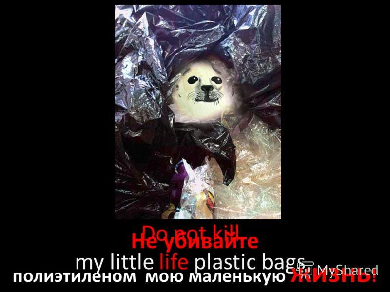Do not kill my little life plastic bags Не убивайте полиэтиленом мою маленькую жизнь !