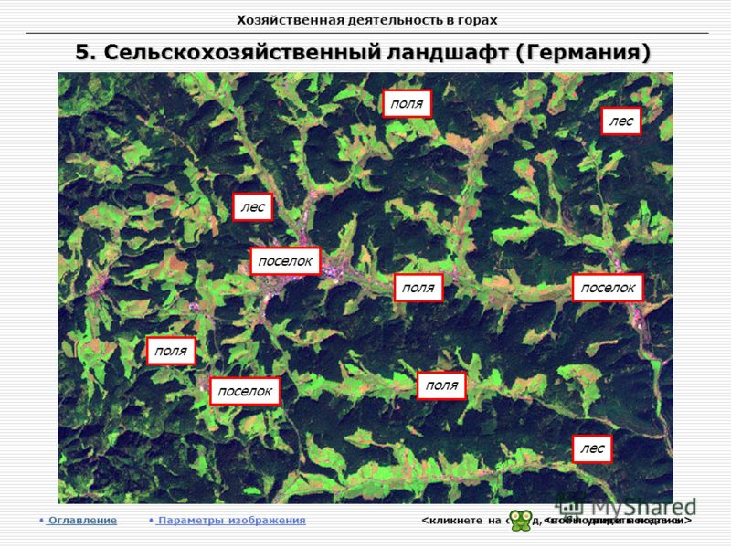Хозяйственная деятельность в горах 5. Сельскохозяйственный ландшафт (Германия) Оглавление Оглавление Параметры изображения лес поля поселок