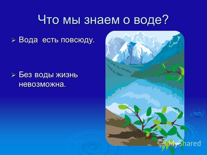 Что мы знаем о воде? Вода есть повсюду. Вода есть повсюду. Без воды жизнь невозможна. Без воды жизнь невозможна.
