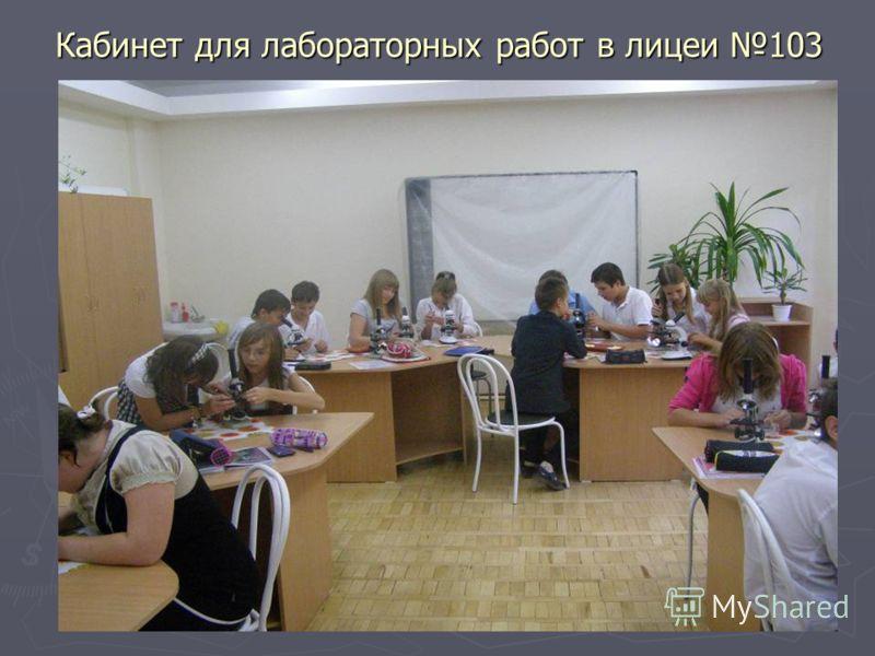 Кабинет для лабораторных работ в лицеи 103