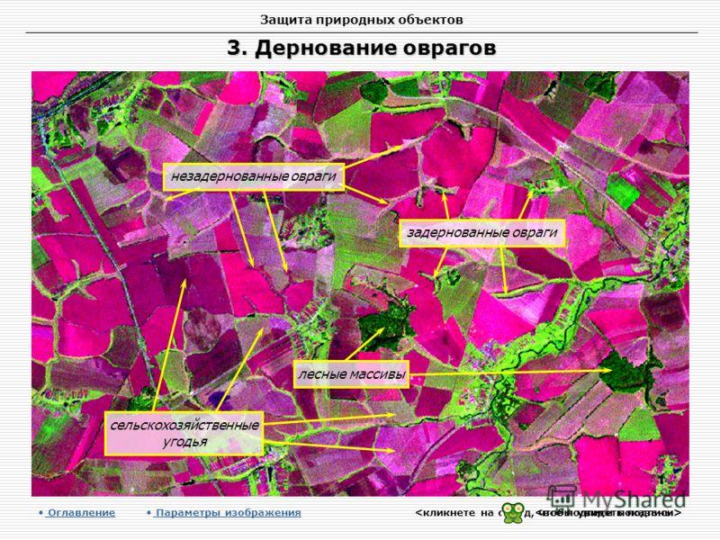 Защита природных объектов 3. Дернование оврагов Оглавление Оглавление Параметры изображения лесные массивы сельскохозяйственные угодья незадернованные овраги задернованные овраги