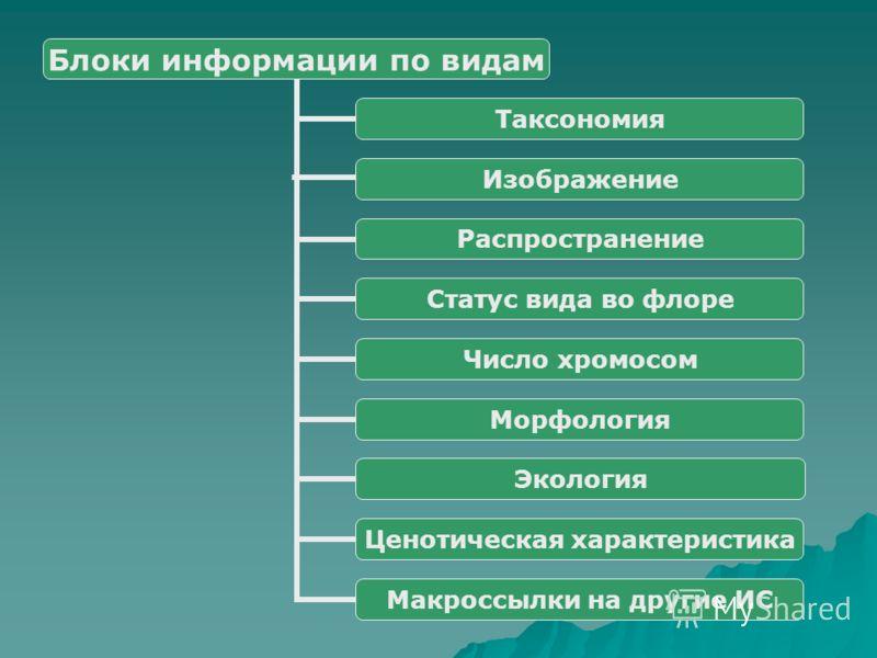 Блоки информации по видам Таксономия Изображение Распространение Статус вида во флоре Число хромосом Морфология Экология Ценотическая характеристика Макроссылки на другие ИС