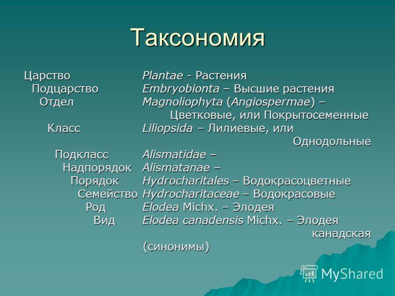 Таксономия ЦарствоPlantae - Растения ПодцарствоEmbryobionta – Высшие растения ПодцарствоEmbryobionta – Высшие растения ОтделMagnoliophyta (Angiospermae) – ОтделMagnoliophyta (Angiospermae) – Цветковые, или Покрытосеменные Цветковые, или Покрытосеменн