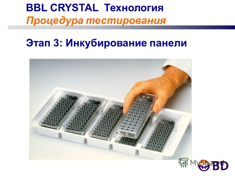 BBL CRYSTAL Технология Процедура тестирования Этап 3: Инкубирование панели