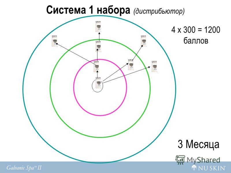 Система 1 набора (дистрибьютор) 3 Месяца 4 x 300 = 1200 баллов