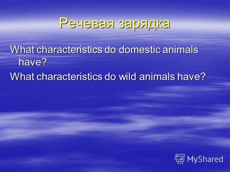 Речевая зарядка What characteristics do domestic animals have? What characteristics do wild animals have?