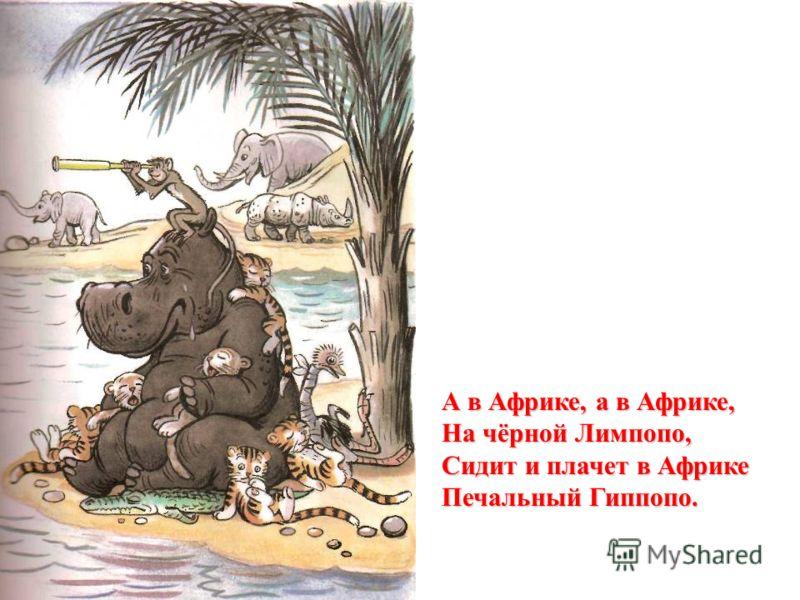 А в Африке, а в Африке, На чёрной Лимпопо, Сидит и плачет в Африке Печальный Гиппопо.