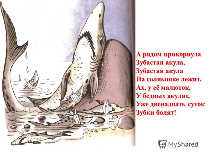 А рядом прикорнула Зубастая акула, Зубастая акула На солнышке лежит. Ах, у её малюток, У бедных акулят, Уже двенадцать суток Зубки болят!