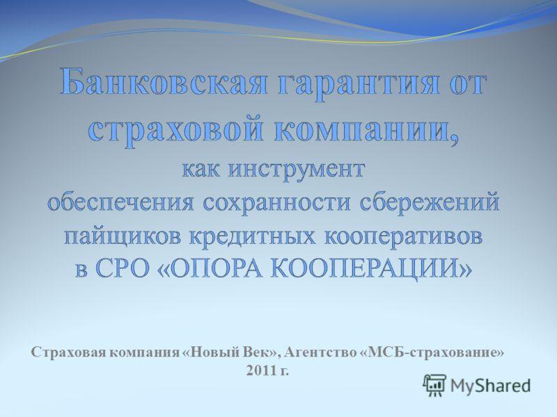 Страховая компания «Новый Век», Агентство «МСБ-страхование» 2011 г.