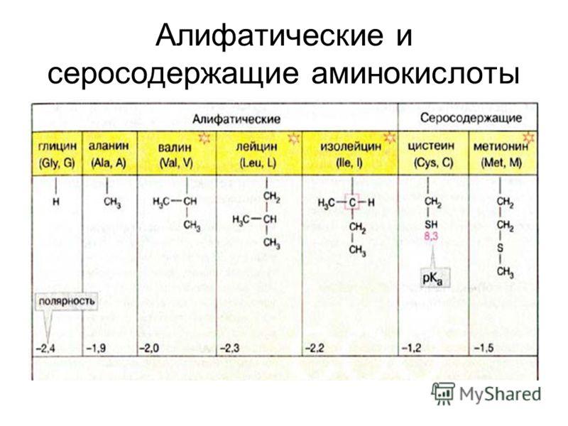 Алифатические и серосодержащие аминокислоты