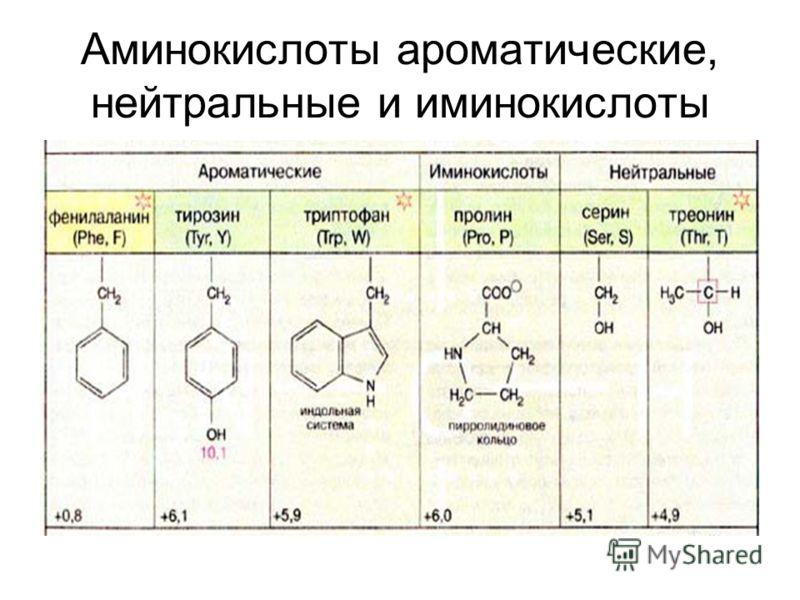 Аминокислоты ароматические, нейтральные и иминокислоты