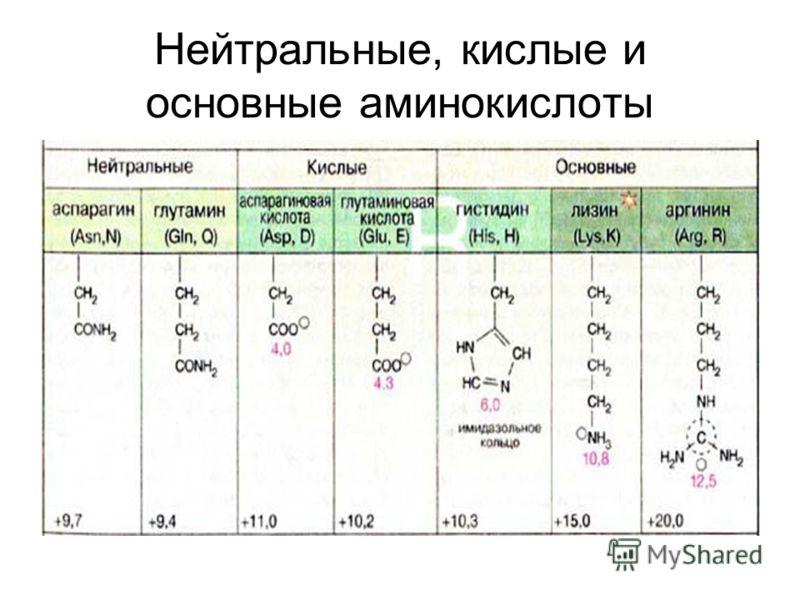 Нейтральные, кислые и основные аминокислоты