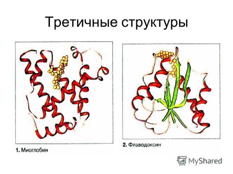 Третичные структуры