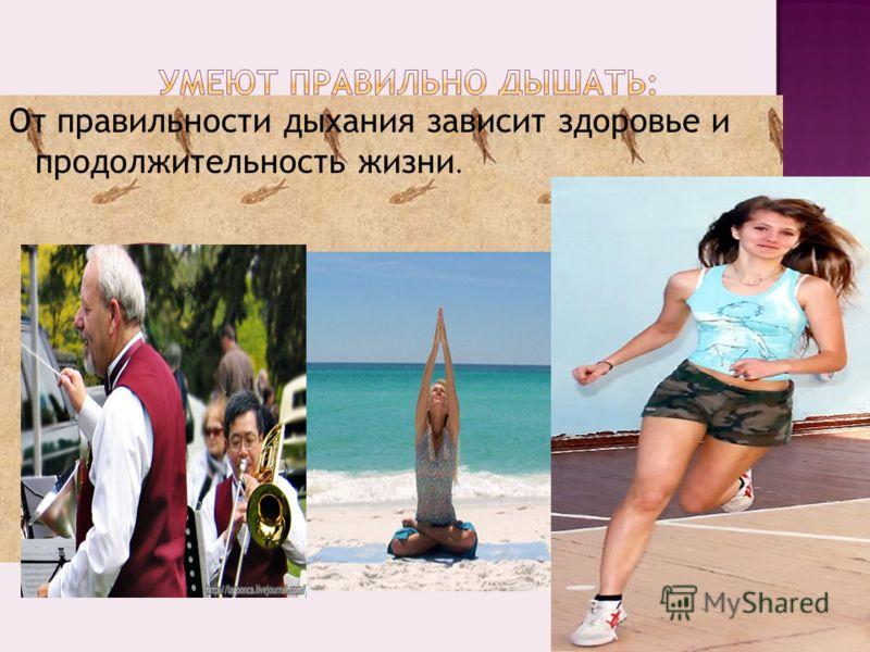 От правильности дыхания зависит здоровье и продолжительность жизни. Музыкант на духовом инструменте спортсмены йоги