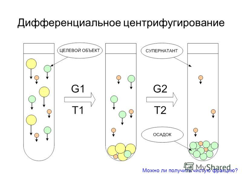 Дифференциальное центрифугирование Можно ли получить чистую фракцию?