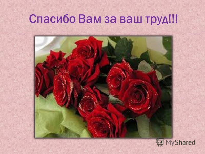 Спасибо Вам за ваш труд!!!