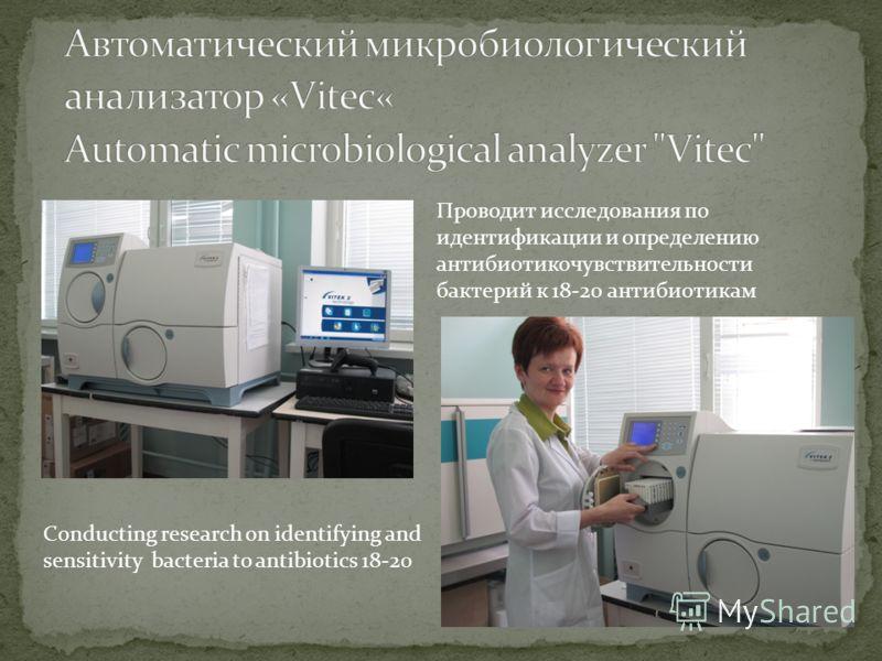 Проводит исследования по идентификации и определению антибиотикочувствительности бактерий к 18-20 антибиотикам Conducting research on identifying and sensitivity bacteria to antibiotics 18-20