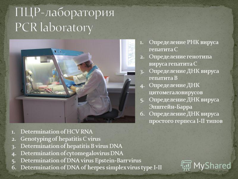 1.Определение РНК вируса гепатита С 2.Определение генотипа вируса гепатита С 3.Определение ДНК вируса гепатита В 4.Определение ДНК цитомегаловирусов 5.Определение ДНК вируса Эпштейн-Барра 6.Определение ДНК вируса простого герпеса I-II типов 1.Determi