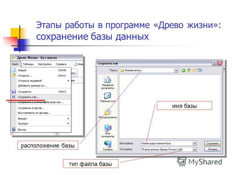 Этапы работы в программе «Древо жизни»: сохранение базы данных имя базы тип файла базы расположение базы